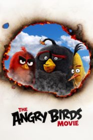 The Angry Birds dual audio