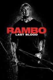 Rambo Last Blood movie download dual audio