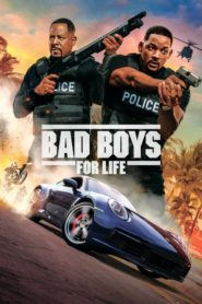 Bad Boys for Life dual audio